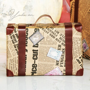 Newspaper suitcase