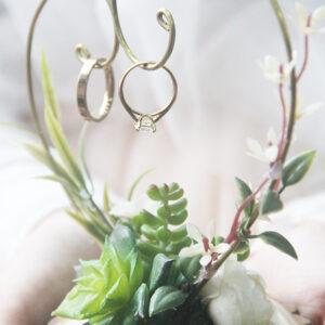 Succulent Ring hanger